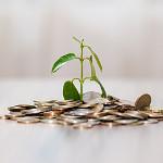 500 plus jako źródło dochodu przy kredycie