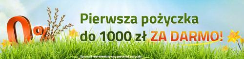 1000 zł bez odsetek w FIlarum