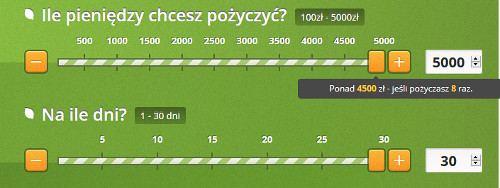 max 5000 zł vivus